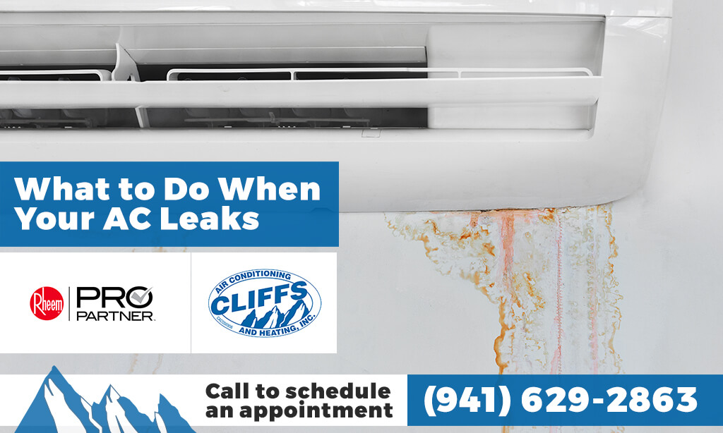 What to Do When Your AC Leaks